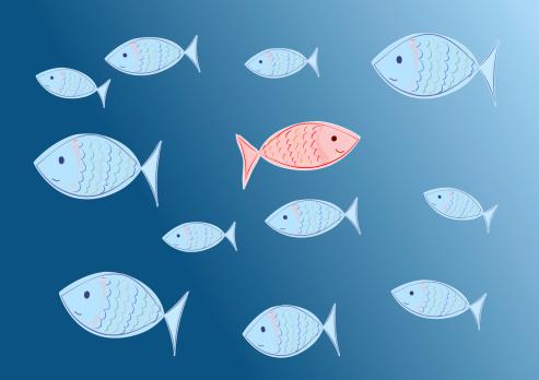 sea-blog