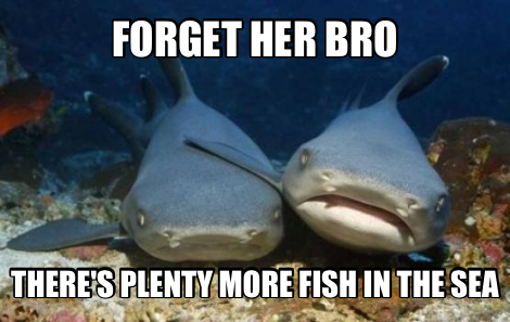More fish in the sea appealing to a large social media for Fish in the sea meme